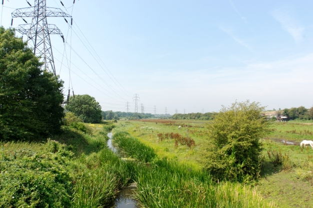 Looking Downstream from Ship Lane Aveley